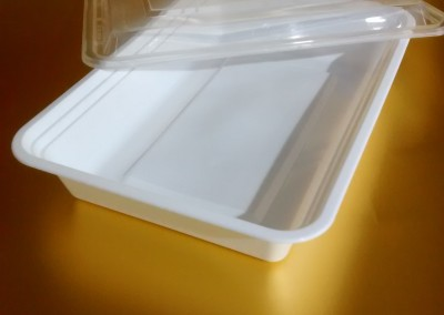 750gms Pasta Box with dome lid(Milky)